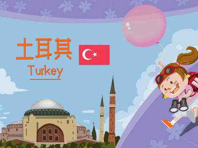 持有效土耳其签证还能再次申请吗?
