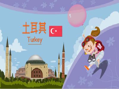 中国公民没有签证能入境土耳其吗?