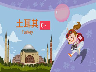 办理土耳其签证需要提供什么材料?
